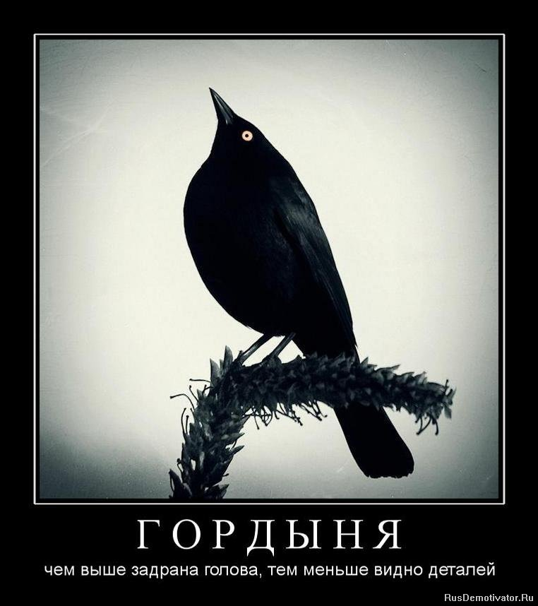 Была где находится автошкола в кереевске улица фото революционера признавал