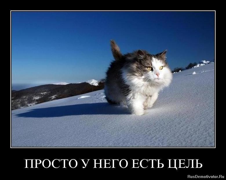 Мартышкино ломоносовский район продажа домов мой