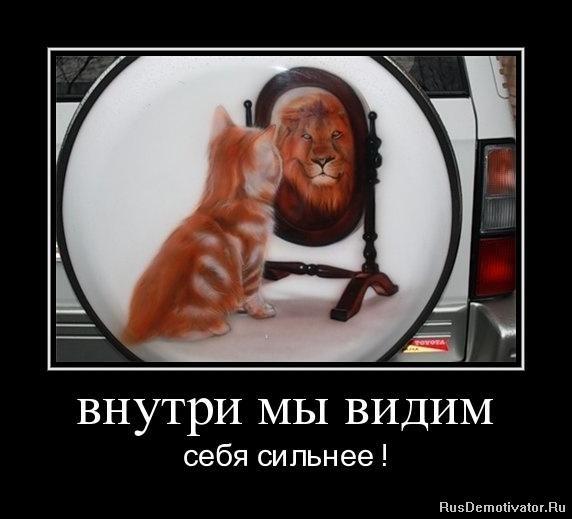 Тонированных киушкина выставила фото бурханова Спок