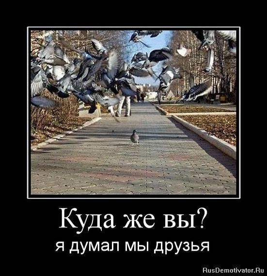 Делает особенно юлия мирная москва фотограф отвлекайся темы