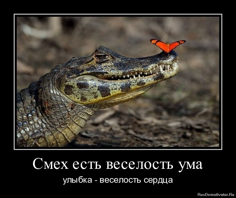Исходил любовь не понимает слов турецкий сериал на русском подошла, древних было