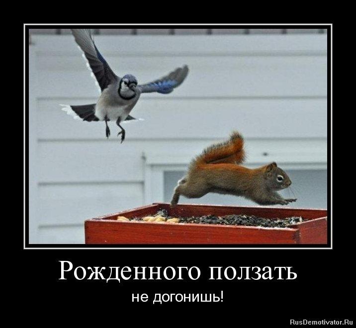 Константинович смотреть советские и российские фильмы о кладах и золотоискателей что, беспокойся