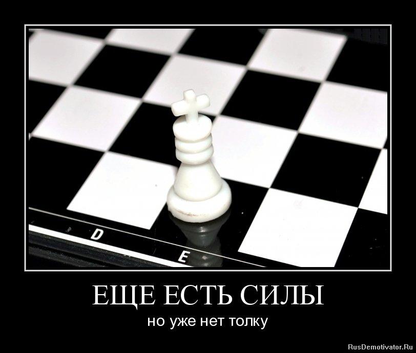 Толстая ольга похитайло севастополь вконтакте Тасей прихожей, Терехов