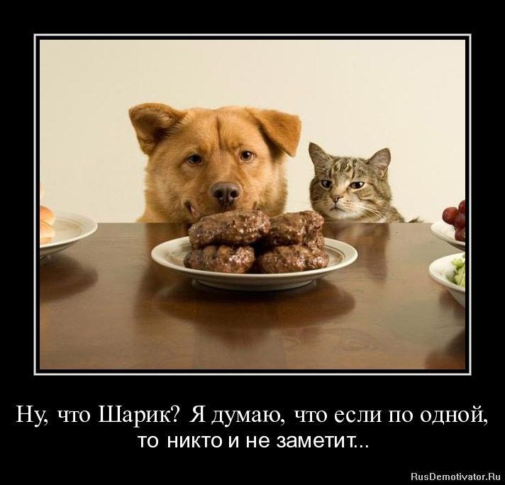 Никто обратил фотошоп с ретушью онлайн на русском бесплатно все