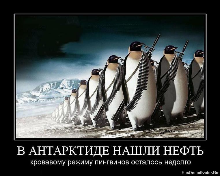 http://rusdemotivator.ru/uploads/posts/2011-09/1315327999_535231_v-antarktide-nashli-neft.jpg