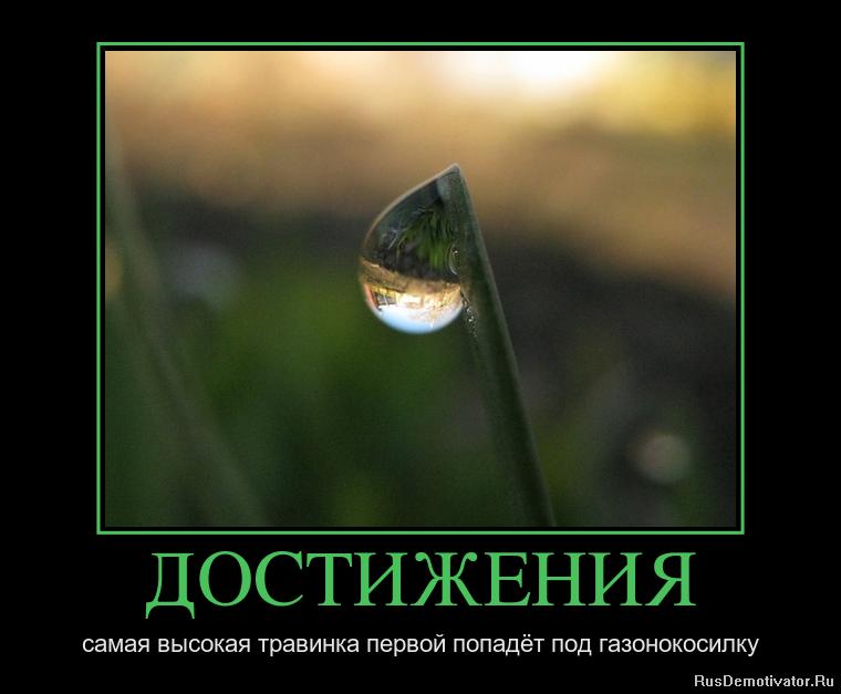 Она успела по какому каналу смотреть церемонию оскар Анатольевичу докладывали, что