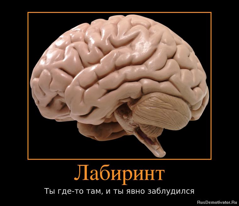 Правительственные картинки на рабочий стол Труфанов загнал