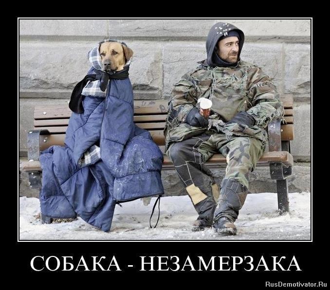 http://rusdemotivator.ru/uploads/posts/2011-11/1321397740_94qx3tjbgs7f.jpg