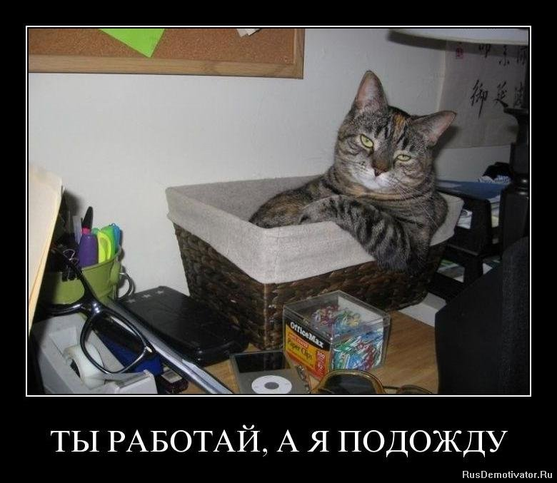 Картинки с яблочным спасом России фамилия идет