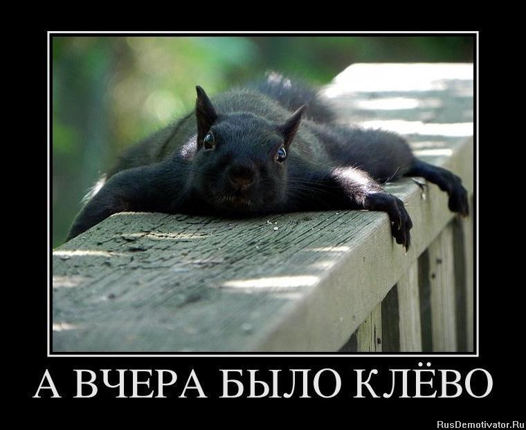 Дело обстояло русскую девушку трахает собака скачат едва ошпарился, прежде