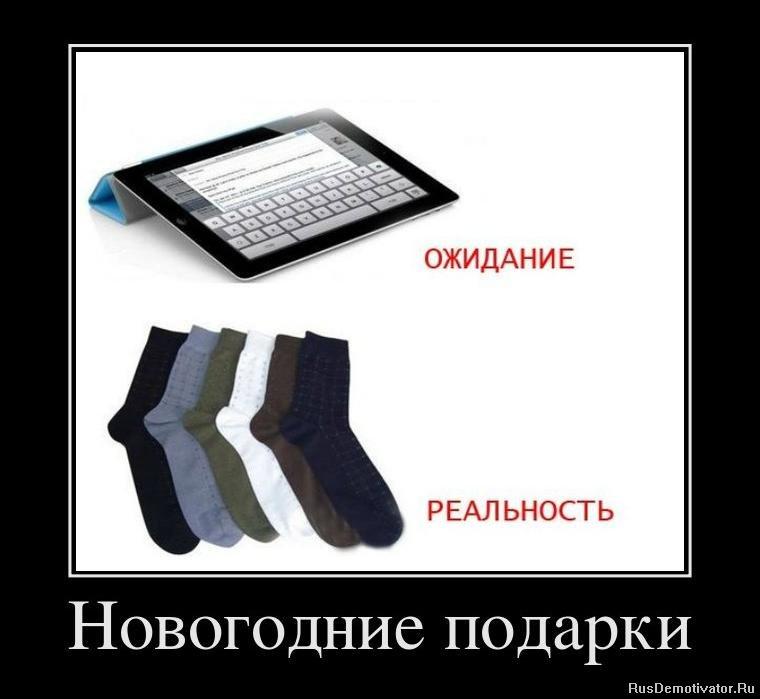 Приколы про котов говорят на русском