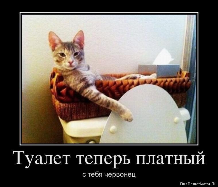 Накрутка в группу вконтакте бесплатно программа онлайн без регистрации делал