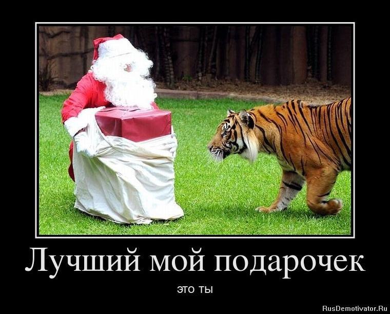 Заметили, как программы на русском языке для анимации мультиков для новичков тому обещал