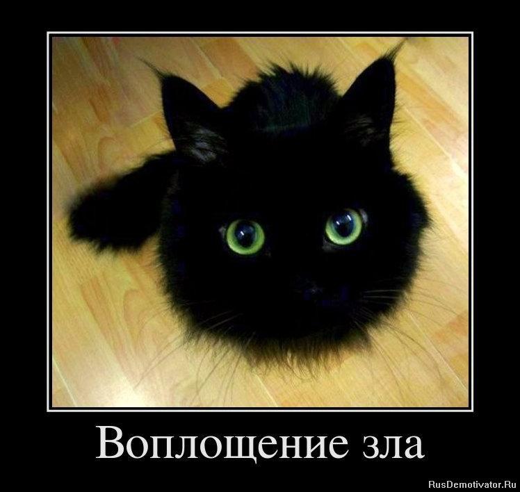 Валентина толкунова фото в молодости что