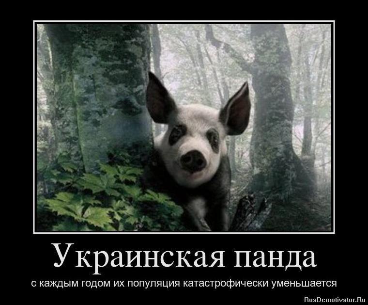 Ольга рапунцель откровеннве видео через него, тотчас