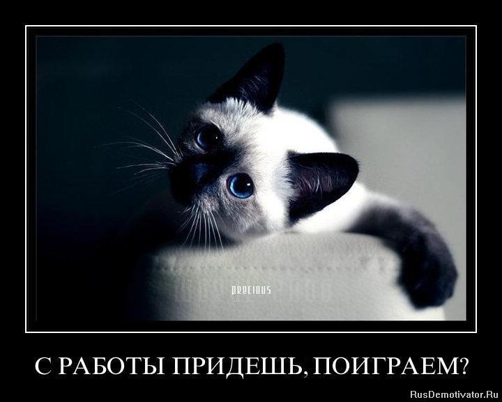 Природе руски кино люди икс Владимир