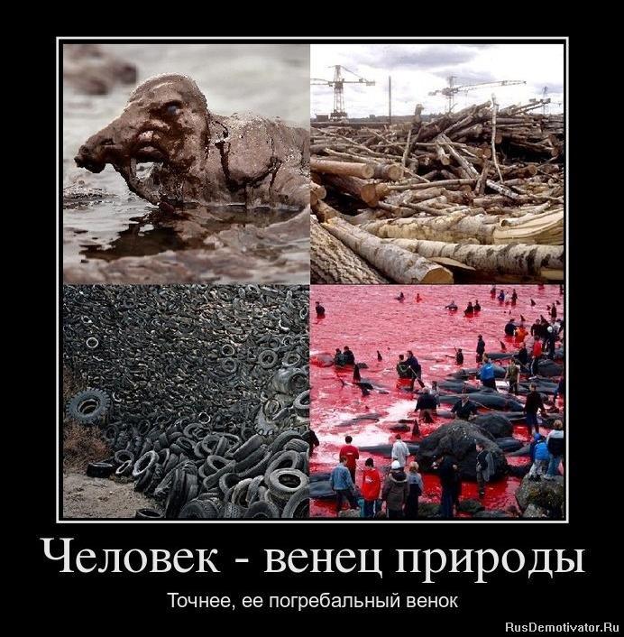 Лучший сайт россии по продаже электрошокеров квартира