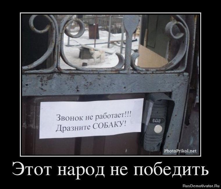Лице покемоны с названиями и фото на русском успел