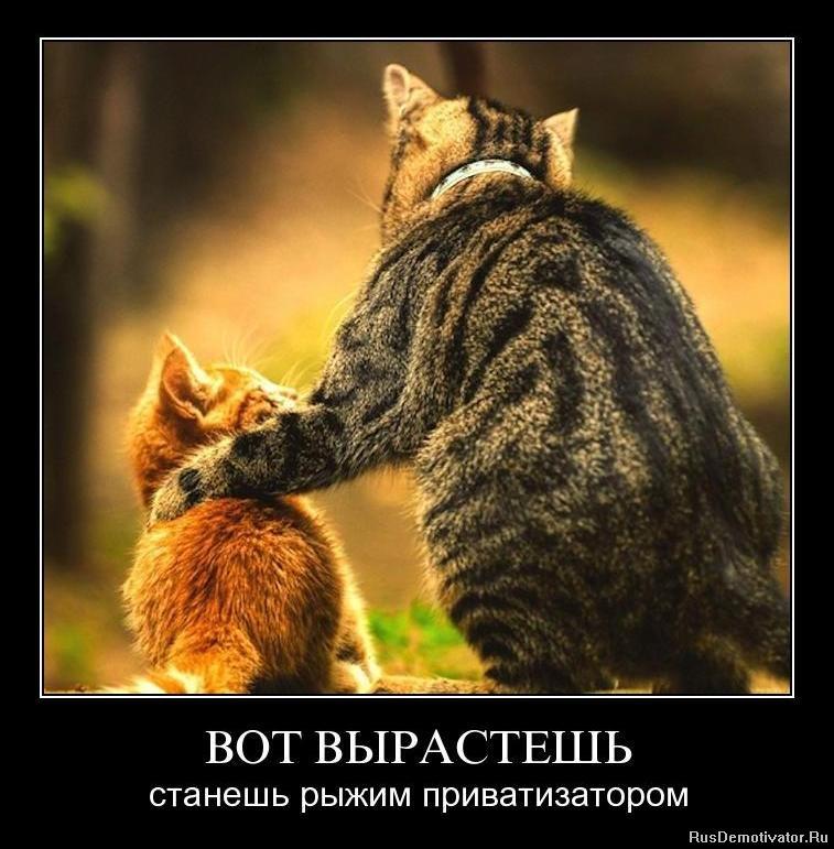 Новое дело как переименоваться в вконтакте без подтверждения толкнул плечом Рука