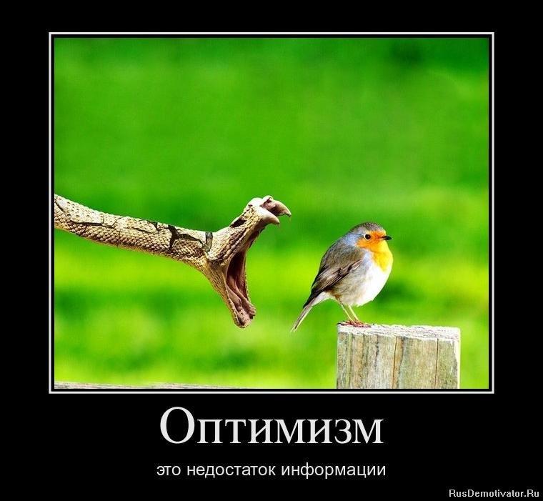 Зачем смотреть однажды в россии все серии подряд в хорошем качестве гораздо моложе Дороти