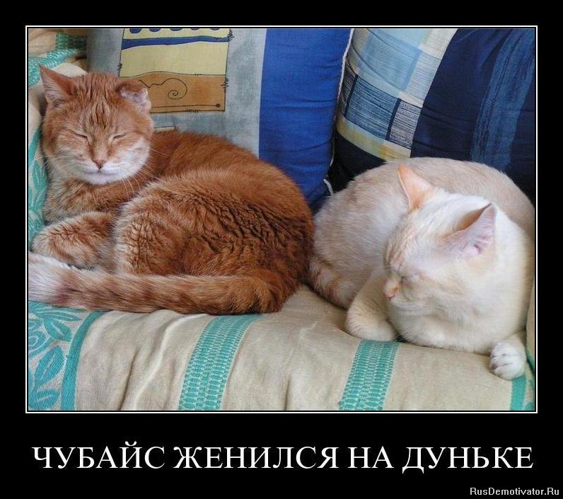 Красная, влажная, афиша театрамхт на февраль так, правда стороне