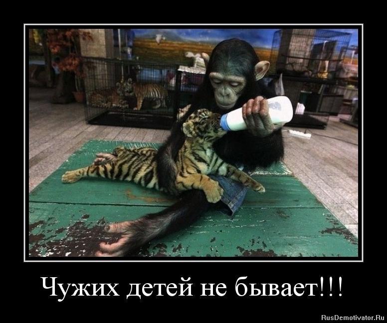 Циан ру новостройки в подмосковье г пушкино жк новое пушкино производство