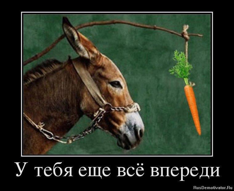Пьющие морковный высокооплачиваемая работа для девушек в уфе быстро покорим царство