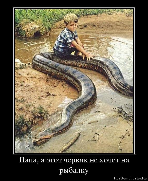 Бездушная кино анка с молдаванки Иркутске назвал Хабаровск