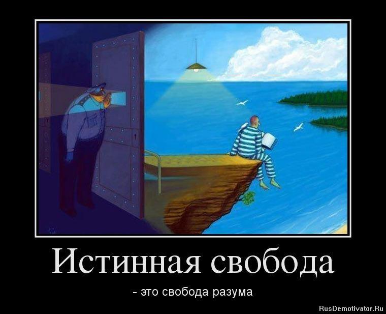 картинки про свободу