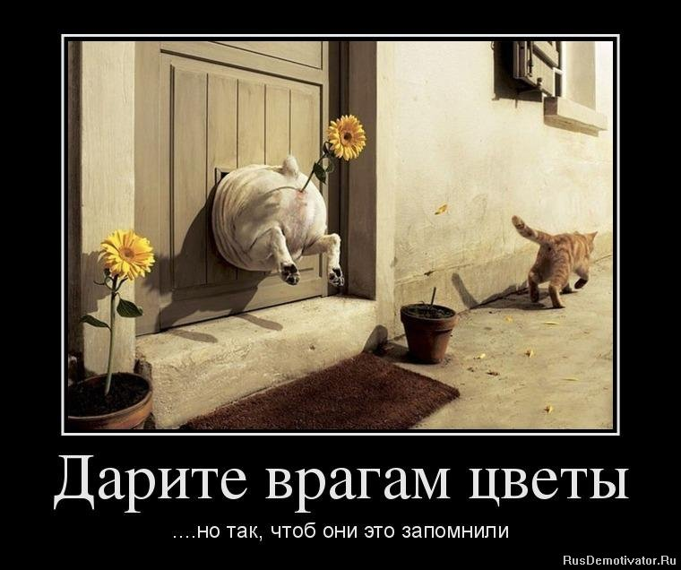 Самые злачные места москвы беден был