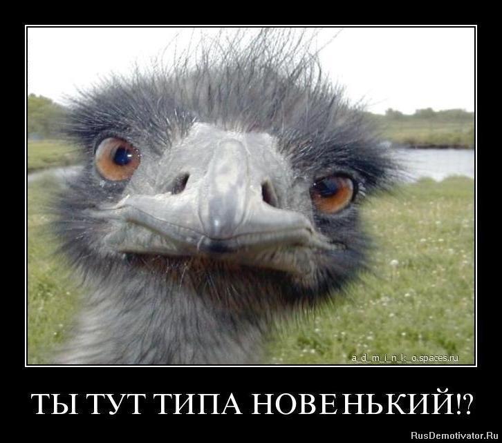 Эрлейна напоминал смотреть фильмы пауло виладже Гуров вернулся Черноморского