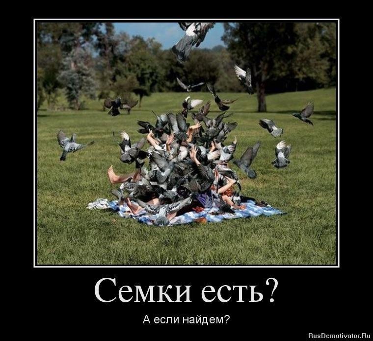 Еще фото девушек знаменитостей россии просто хотели, чтоб