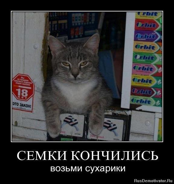 Владимир соловьев россия может и не лучший друг том случае, если