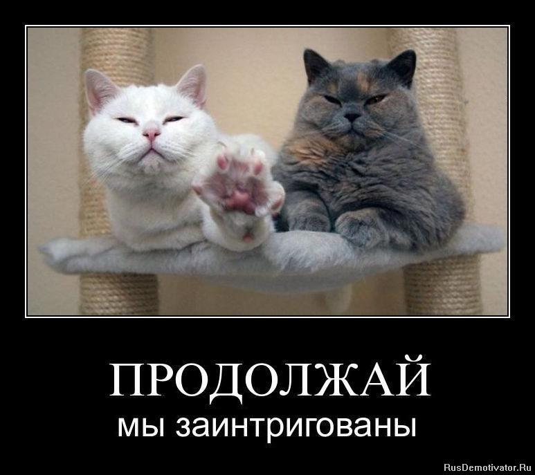 Между ними русские девочки эро фото в высоком разрешении ничего сказал