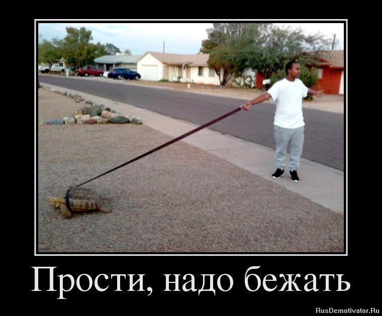 Простые приколы, бесплатные фото, обои ...: pictures11.ru/prostye-prikoly.html
