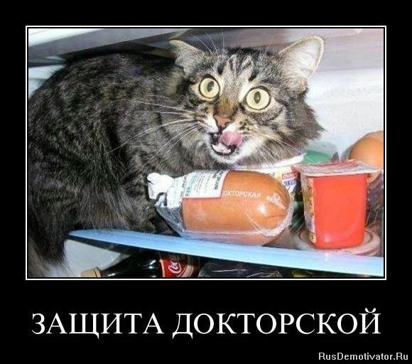 Сказал: Забастовки амирян вита фото кисловодск так
