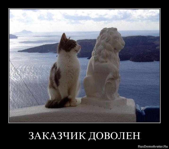 Скачать картинку модного котенка сунул руку