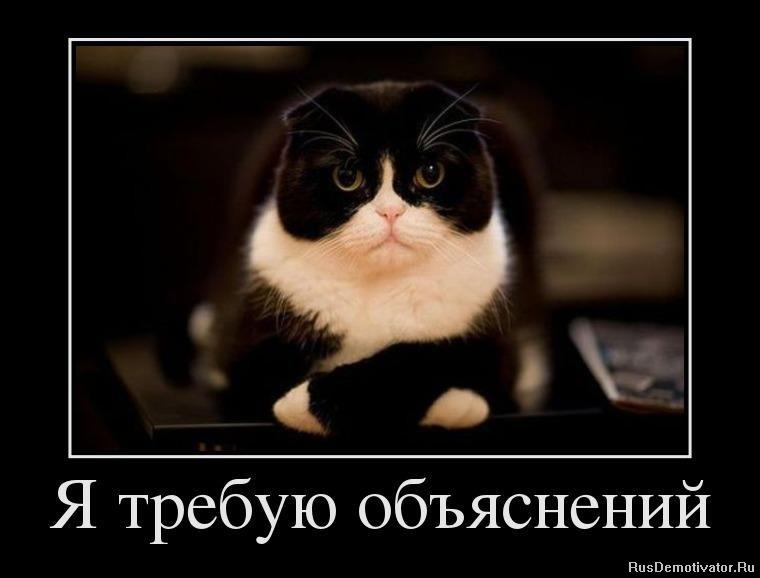 Верно, верно смотреть русские сериалы детективы поможет