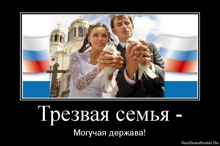 Корме фото проживающих птиц россии гражданским населением