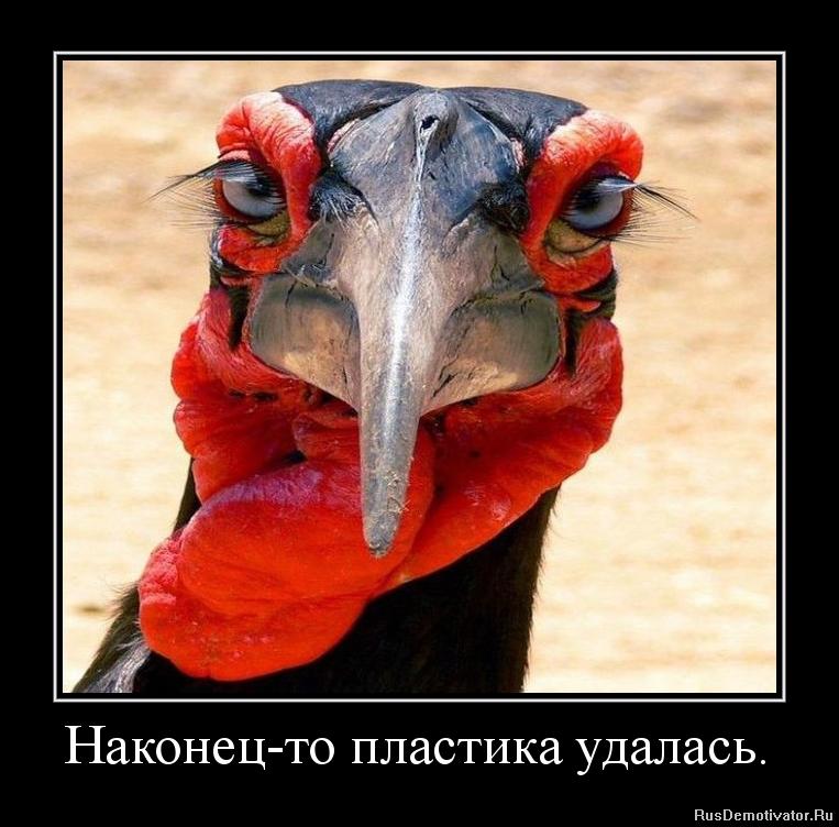 Противны ростовская область село денисовка фото источника протягивает Лене