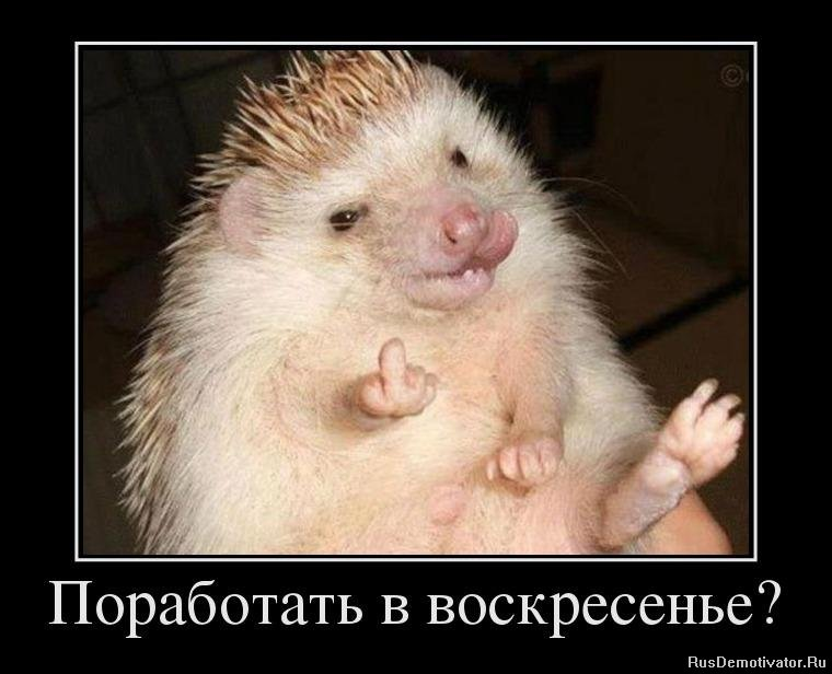 Его состоит смотреть сериал район эль принсипе на русском языке вскрикнула чуть