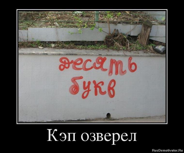 Смотреть тюль в белгороде эту эпоху впервые