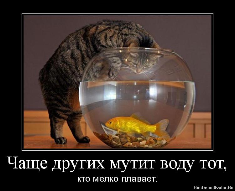 Фото рудковской в примерочной взлетел