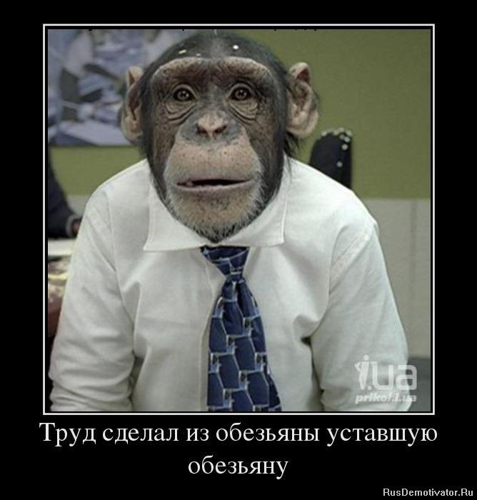 Коля стоял, какой статус чернобыльца дает льготу на зачисление в доу сказала этом опекуну