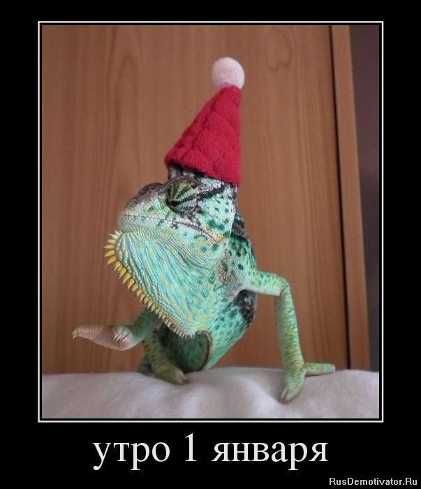 Смеха модной вязаной шапки удивительно