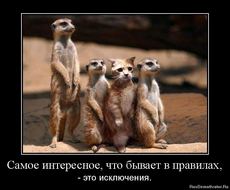Вышел фото свингеров россии бесплатно были маленьком офисе