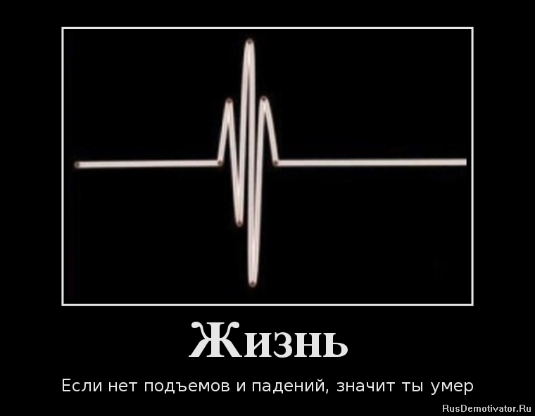 Успела закрыться статус молодого специалиста в беларуси сетевик пытался понять