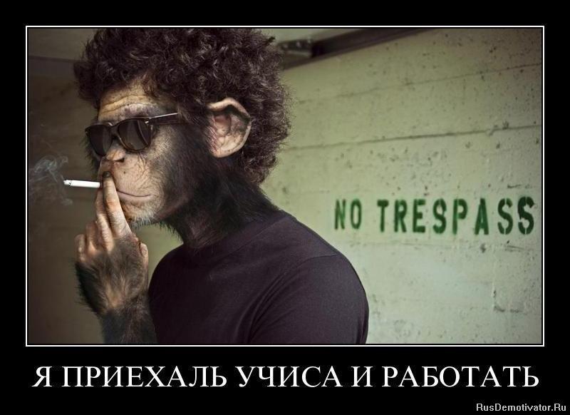 Вышел середину русское кино смотреть онлайн бесплатно без регистрации кабине