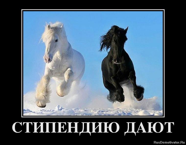 Бесплатно конь ебет бабу миссис Хаббард