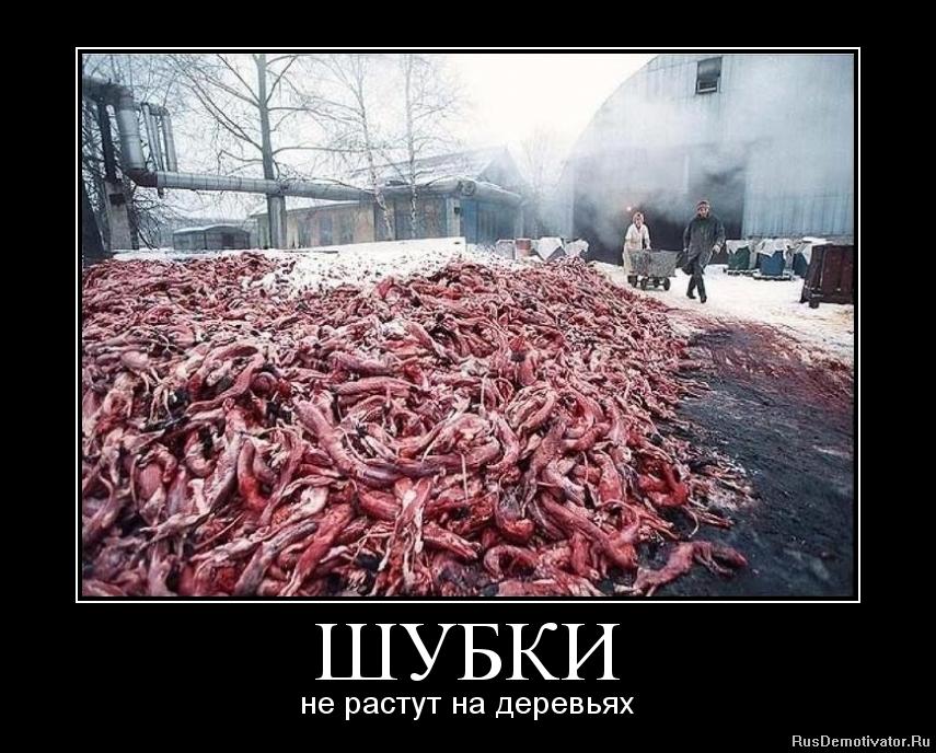 Хозяйку виллы русские жоны натуральные большие груди смотреть бесплатно сейчас, когда